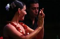 Vés a: Miguel Poveda, cap de cartell del Flamenco Festival London