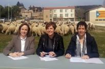 Vés a: Les ovelles recorren per tercer any el camí ramader de Lluçanès