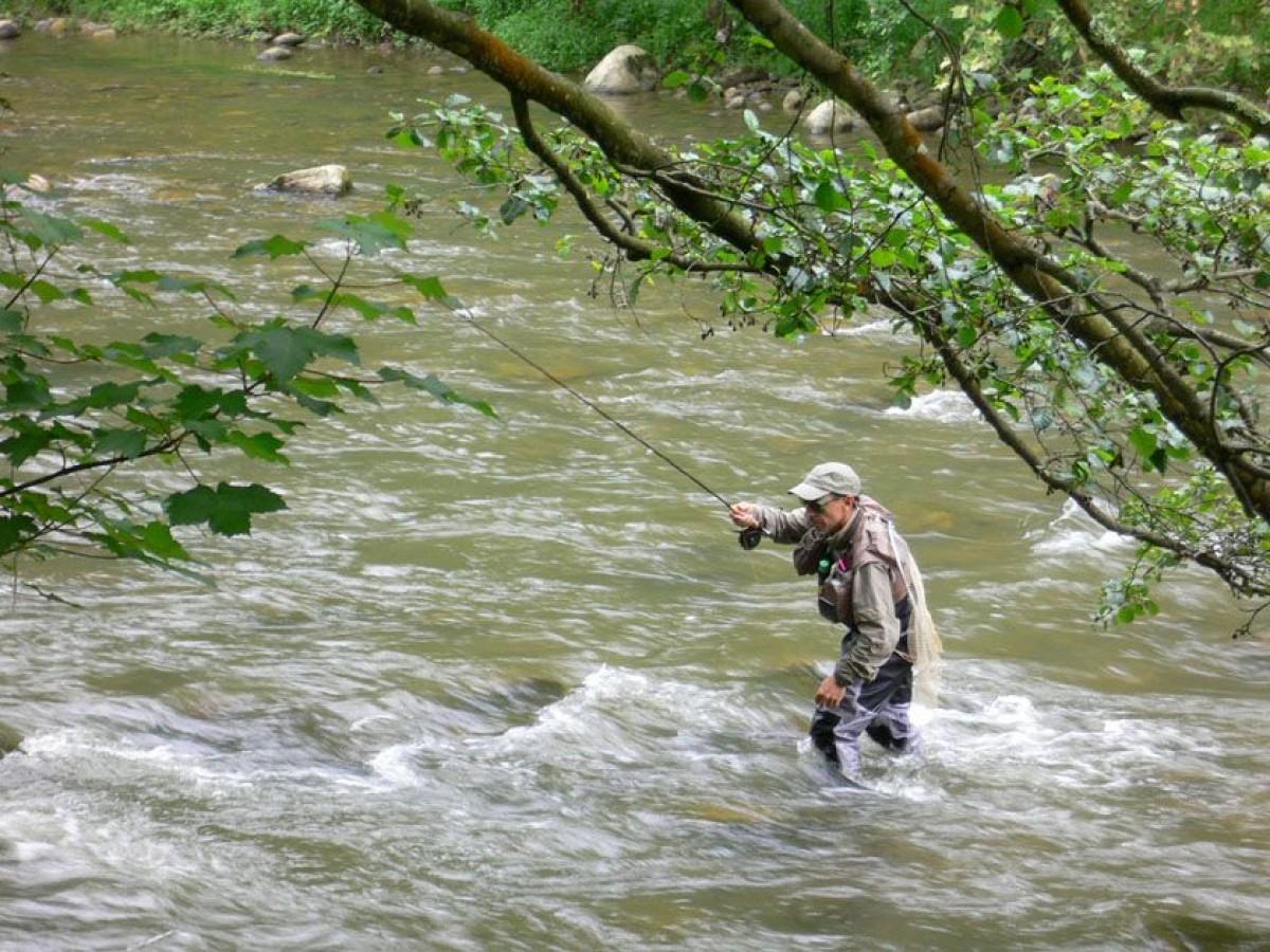 Un pescador en plena acció.
