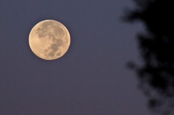 Baudelaire i la lluna que plora