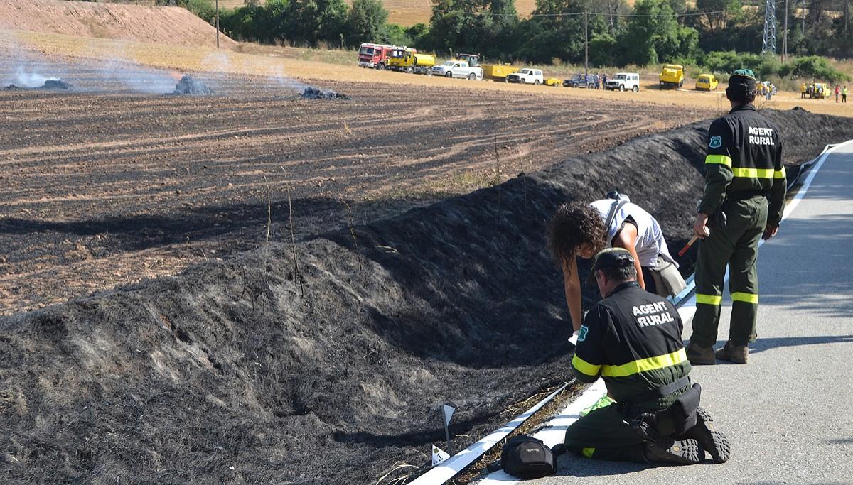 Agents Rurals i científica determinant el punt exacte d'inici de l'incendi