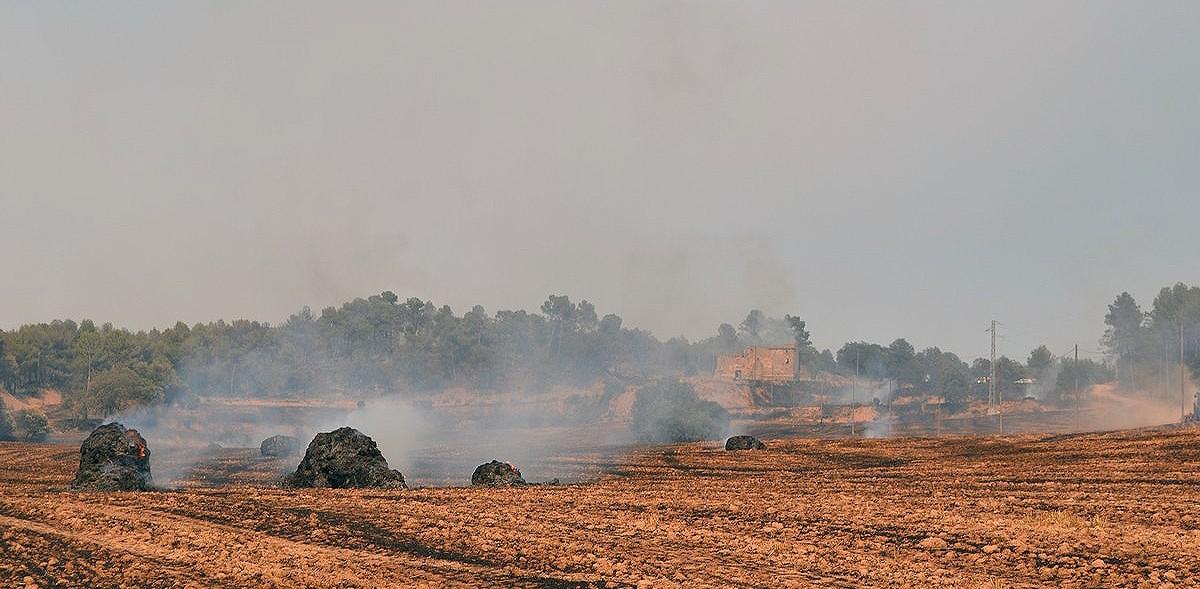 Un camp fumejant després que hi passessin les flames de l'incendi, aquest dilluns a la tarda