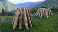 Vés a: VÍDEO Els tabals tradicionals del Vallès fan vibrar Caldes de Montbui