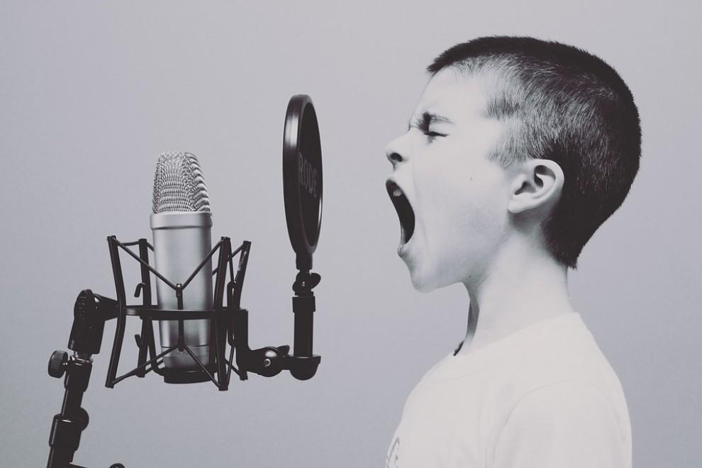 Cançons per cridar de ràbia