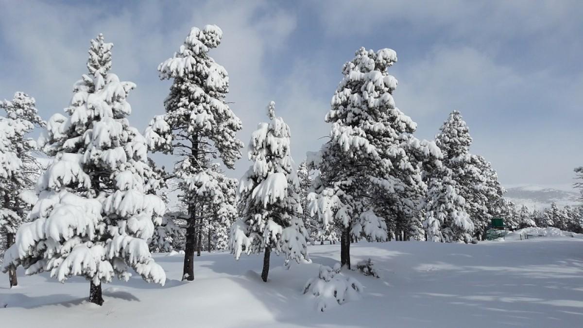 Imatge de l'última nevada a Guils Fontanera