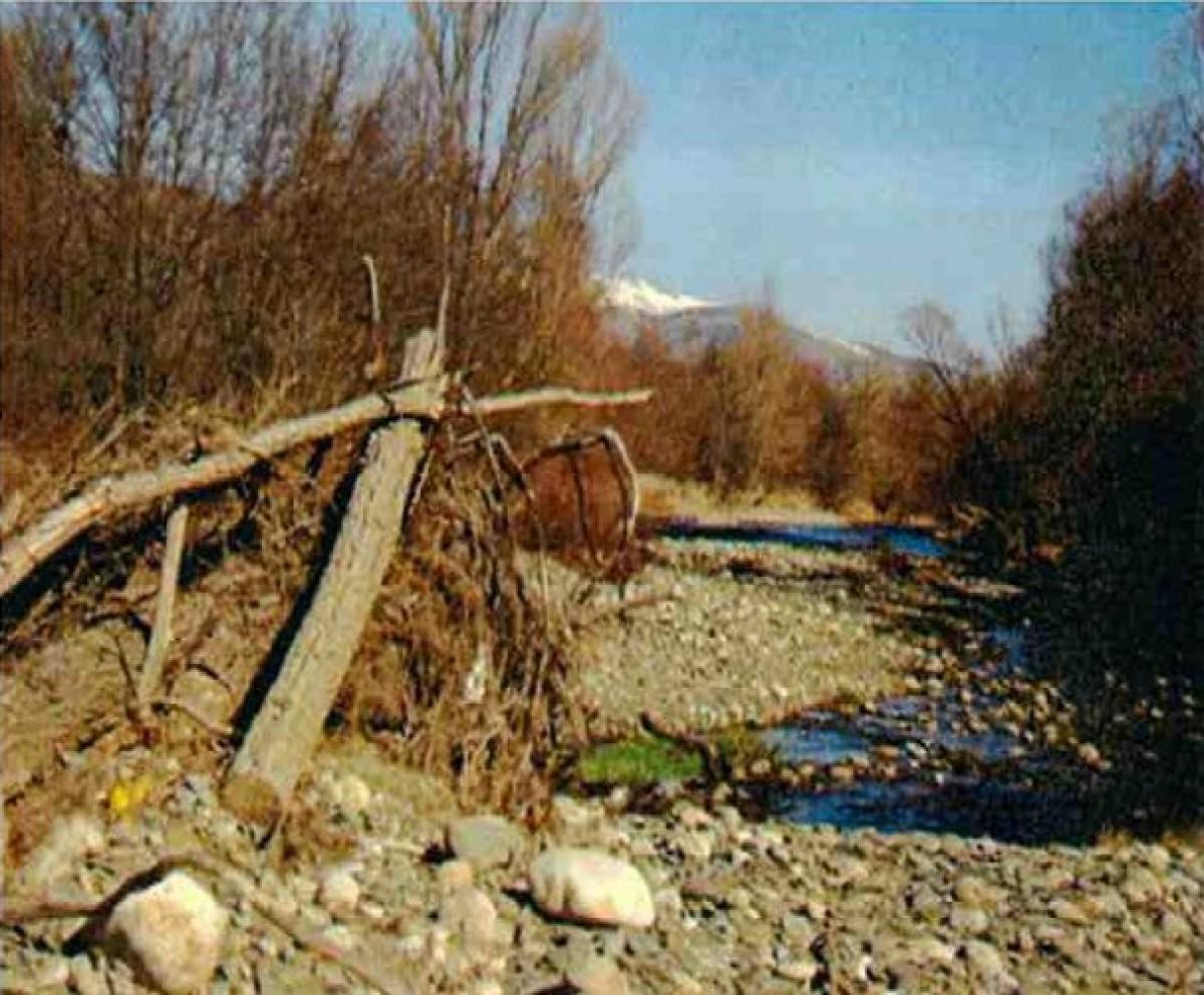 Imatge de l'estat actual del riu Segre al seu pas pel terme de Das. Aquesta és una de les fotografies que acompanya la carta enviada a la CHE