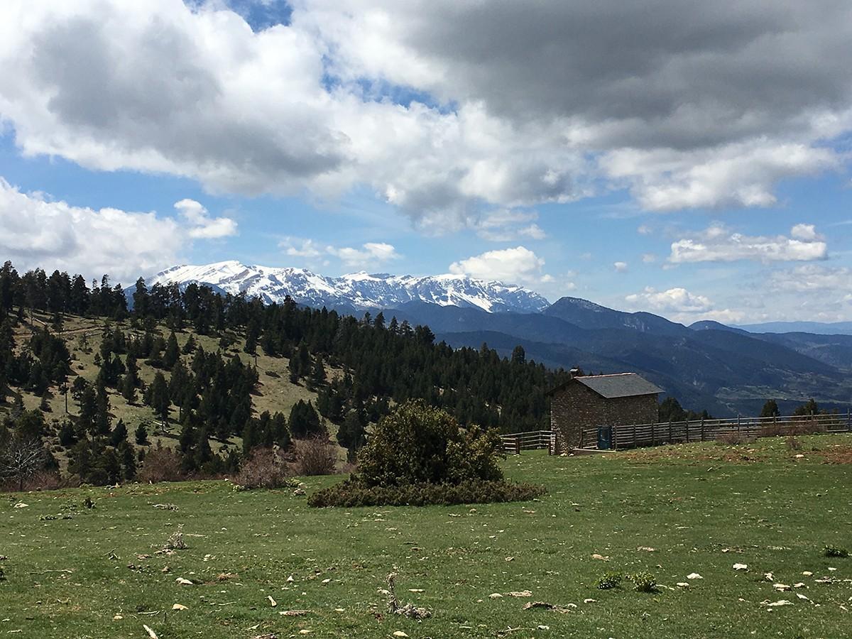 L'Oficina Catalana del Canvi Climàtic publica un estudi sobre l'adaptació al canvi climàtic del sector agrícola al Pirineu