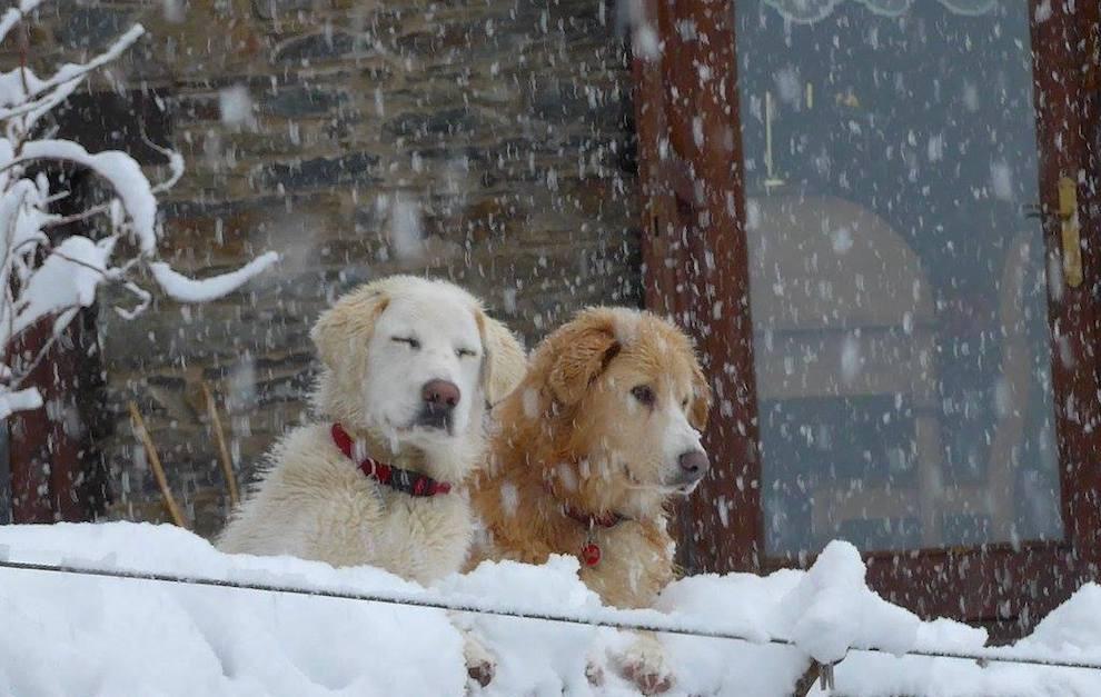 Aquest cap de setmana pot tornar a nevar al Principat