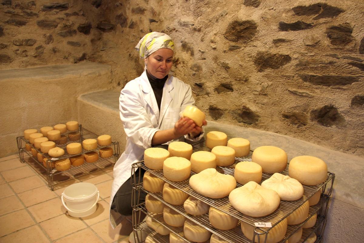 Sara Gutiérrez, elaborant formatges a Éller, a Bellver de Cerdanya
