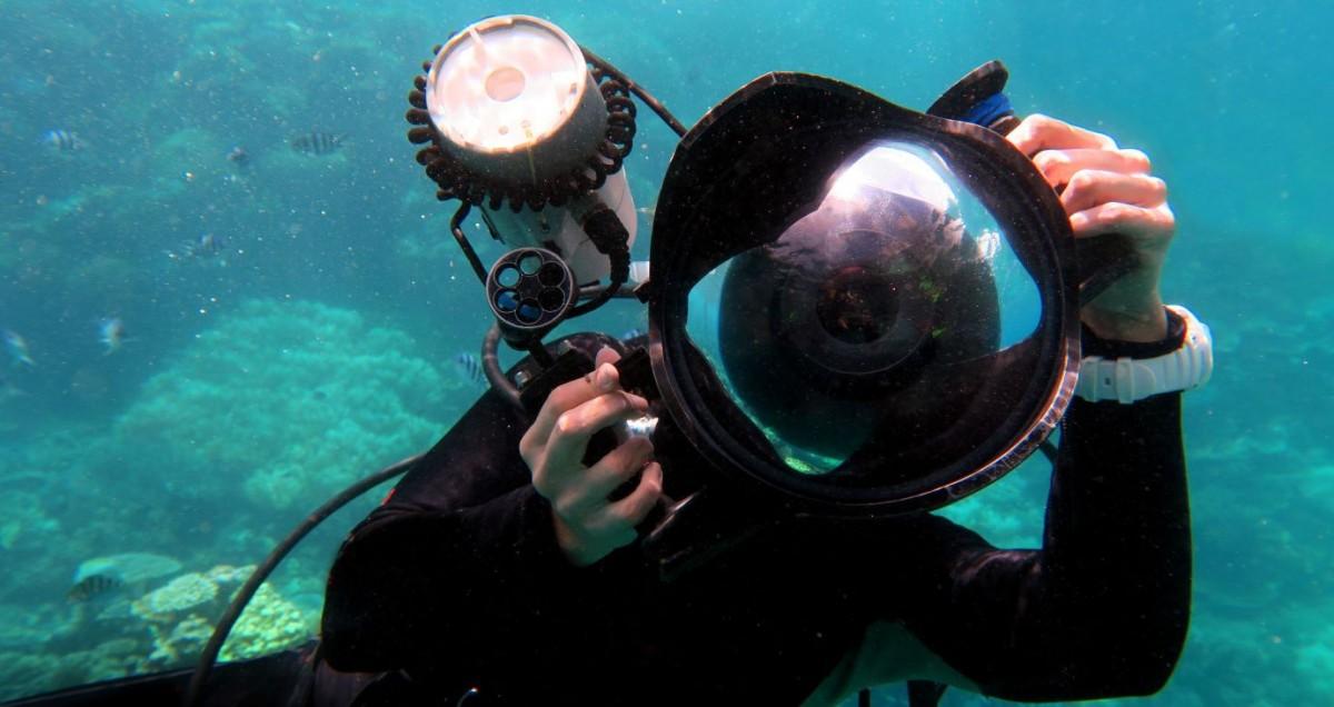 El concurs de fotografia aquàtica premia les millors imatges del 2018