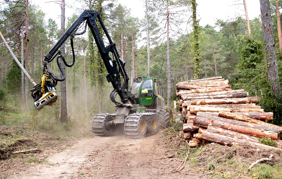 Una màquina taladora al costat d'un munt de troncs.