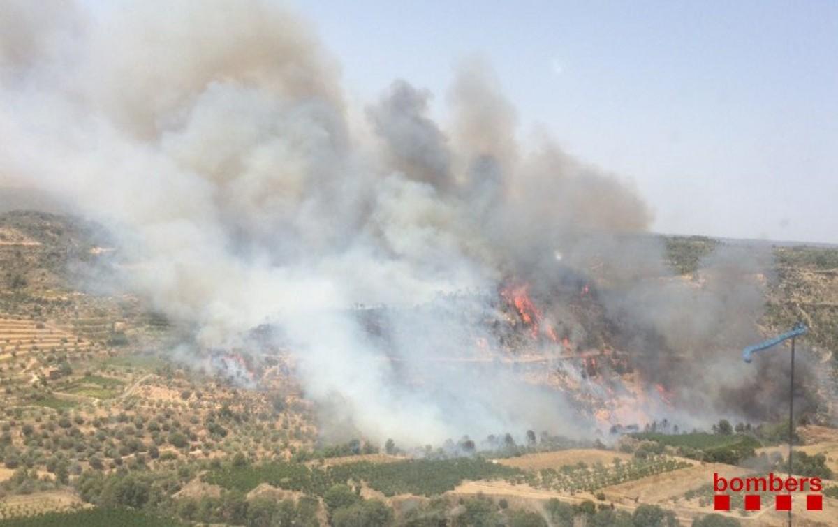 Imatge de l'incendi forestal entre Vinebre i la Torre de l'Espanyol.