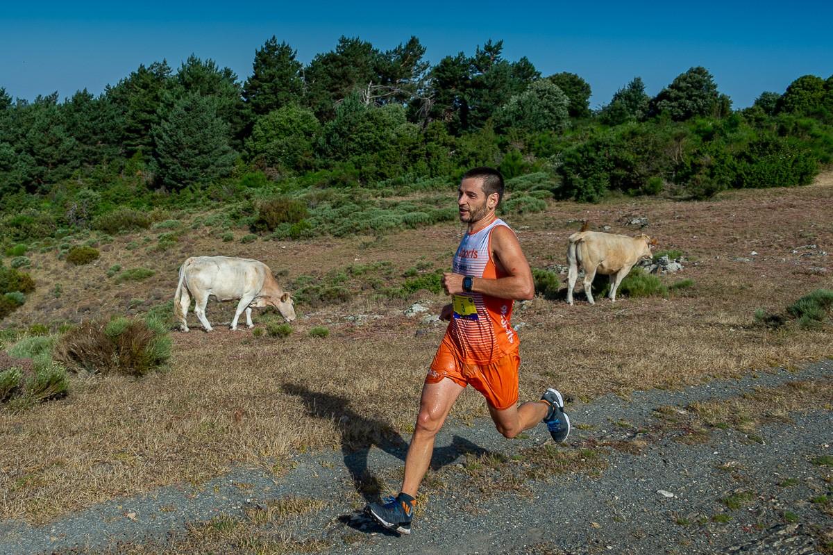 Xavi Prims, campió del Trail Fonts del Montseny 2019