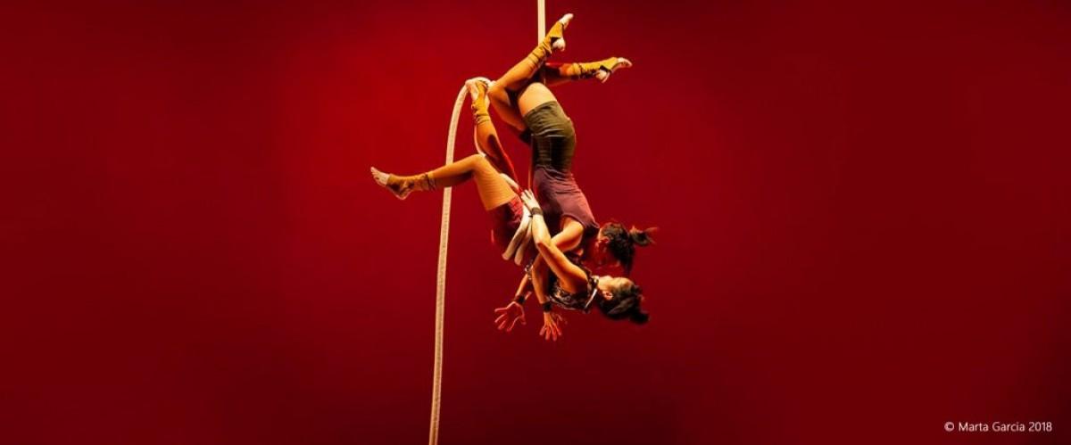 Companyia Tub d'assaig presenta el Circ de l'any