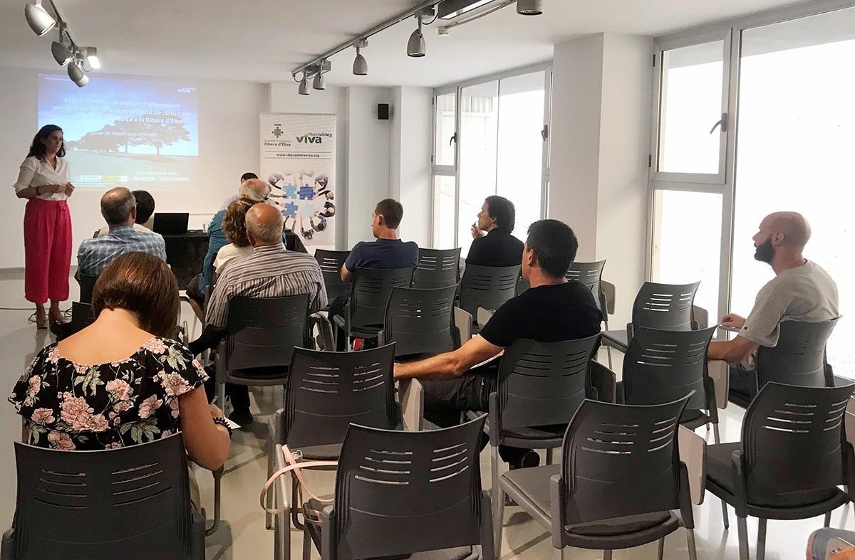 Presentació de l'estudi al Consell Comarcal de la Ribera d'Ebre