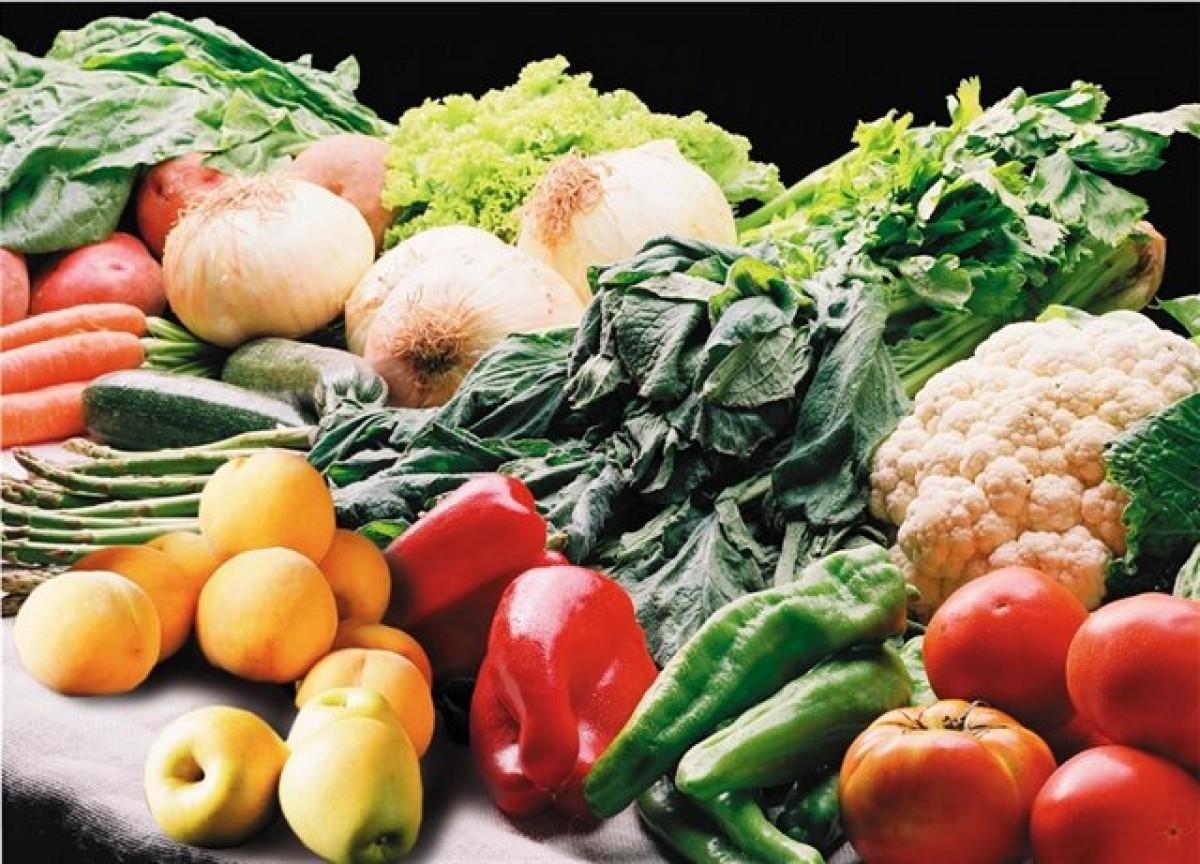 La dieta mediterrània és la més sostenible