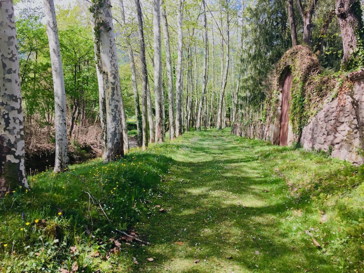 El sector agroforestal català adverteix sobre l'abandonament dels boscos, de l'agricultura i dels pobles.