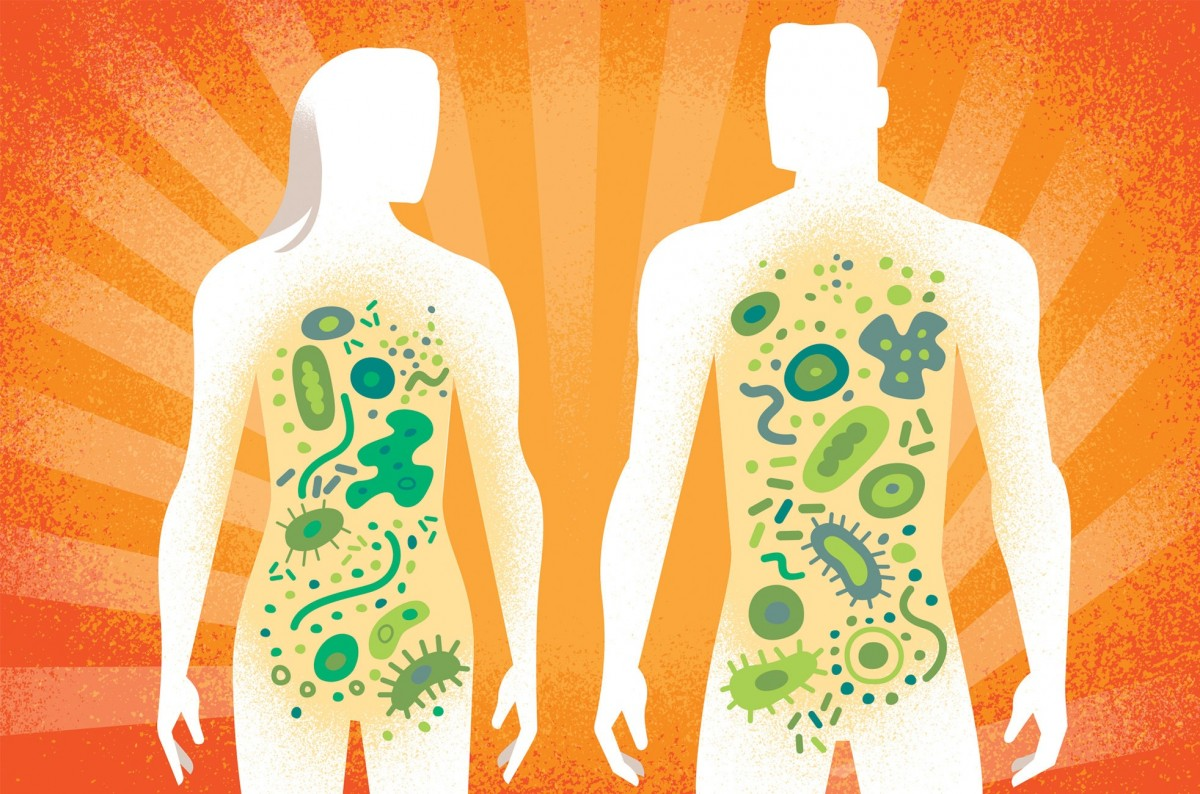 El cos humà és ple d'espècies microbianes.