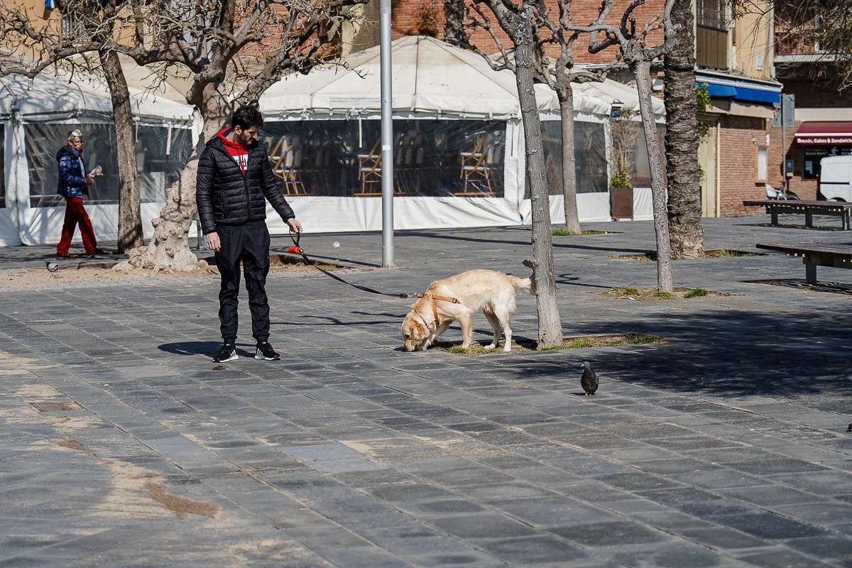 Un home passeja un gos a Barcelona, durant el cconfinament
