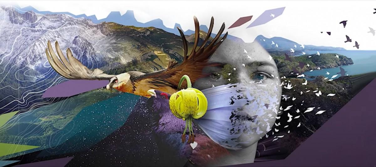 «El viatge de Pirene» proposa 23 activitats de descoberta del Pirineu.