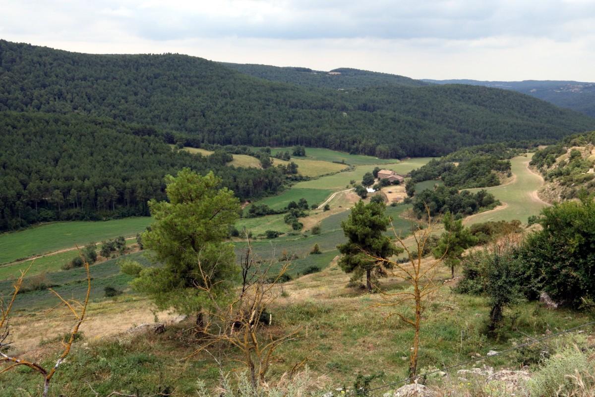 Una zona de Llobera al Solsonès, on es pot apreciar la tipologia de paisatge mosaic