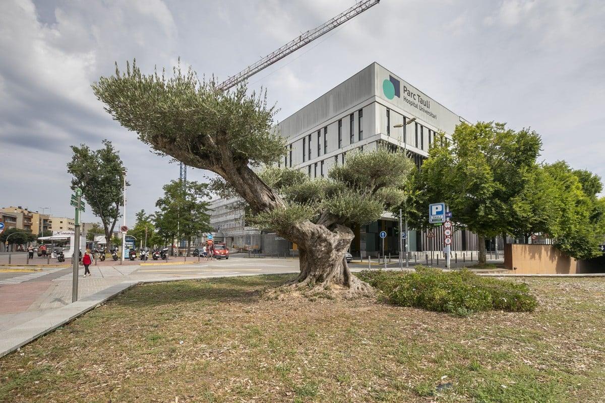 L'Hospital Parc Taulí