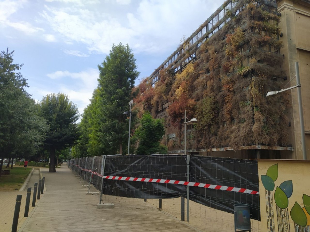 El jardí vertical de l'antiga fàbrica Tabacalera, a punt de ser desmuntat.