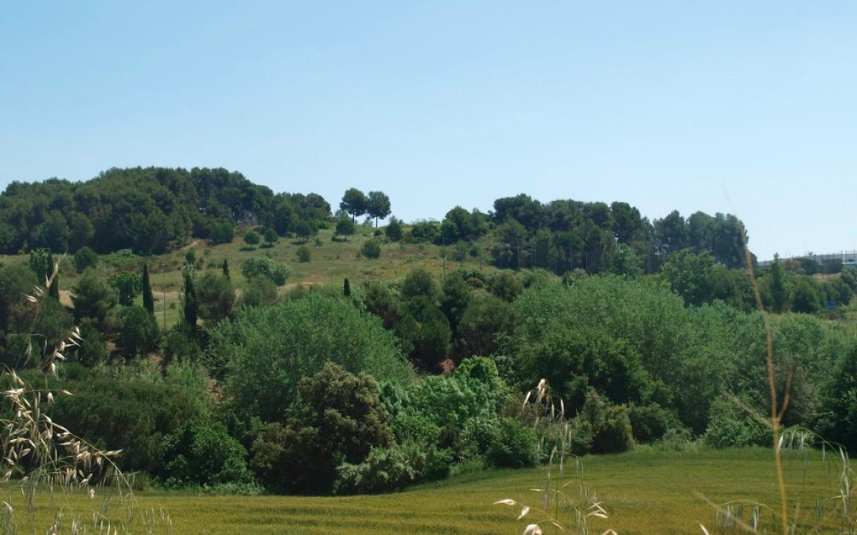 El camp de golf de Can Sant Joan