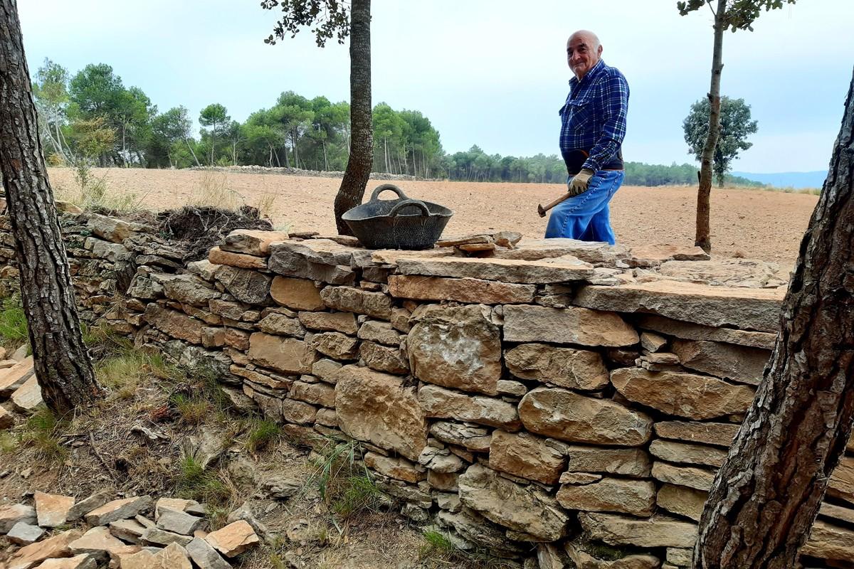 Camí ramader del Pla de l'Oliva realitzada per Josep Solsona, Premi Pedra Seca