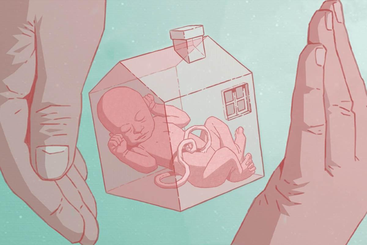 Una placenta artificial per als nadons prematurs