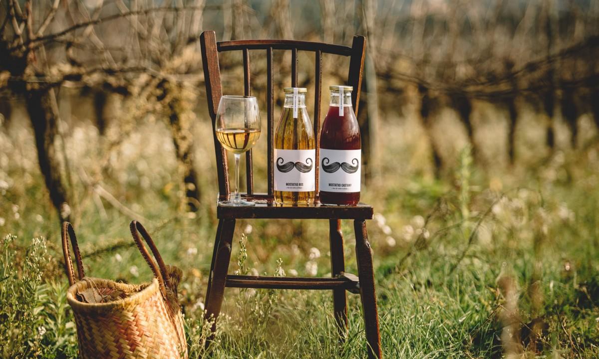 Mostatxo blanc i Mostatxo negre, mosts de vinyes ecològiques