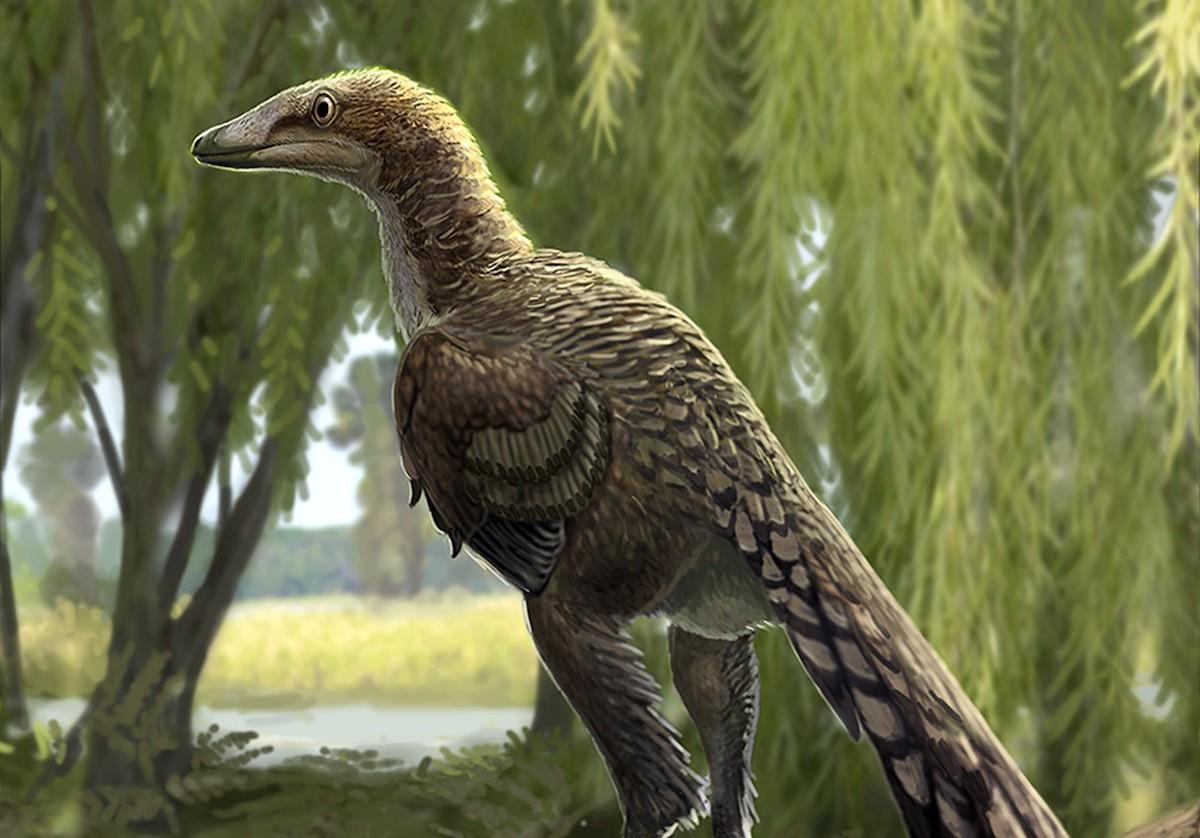 Dibuix que recrea el 'Tamarro insperatus', el dinosaure que s'ha pogut identificar