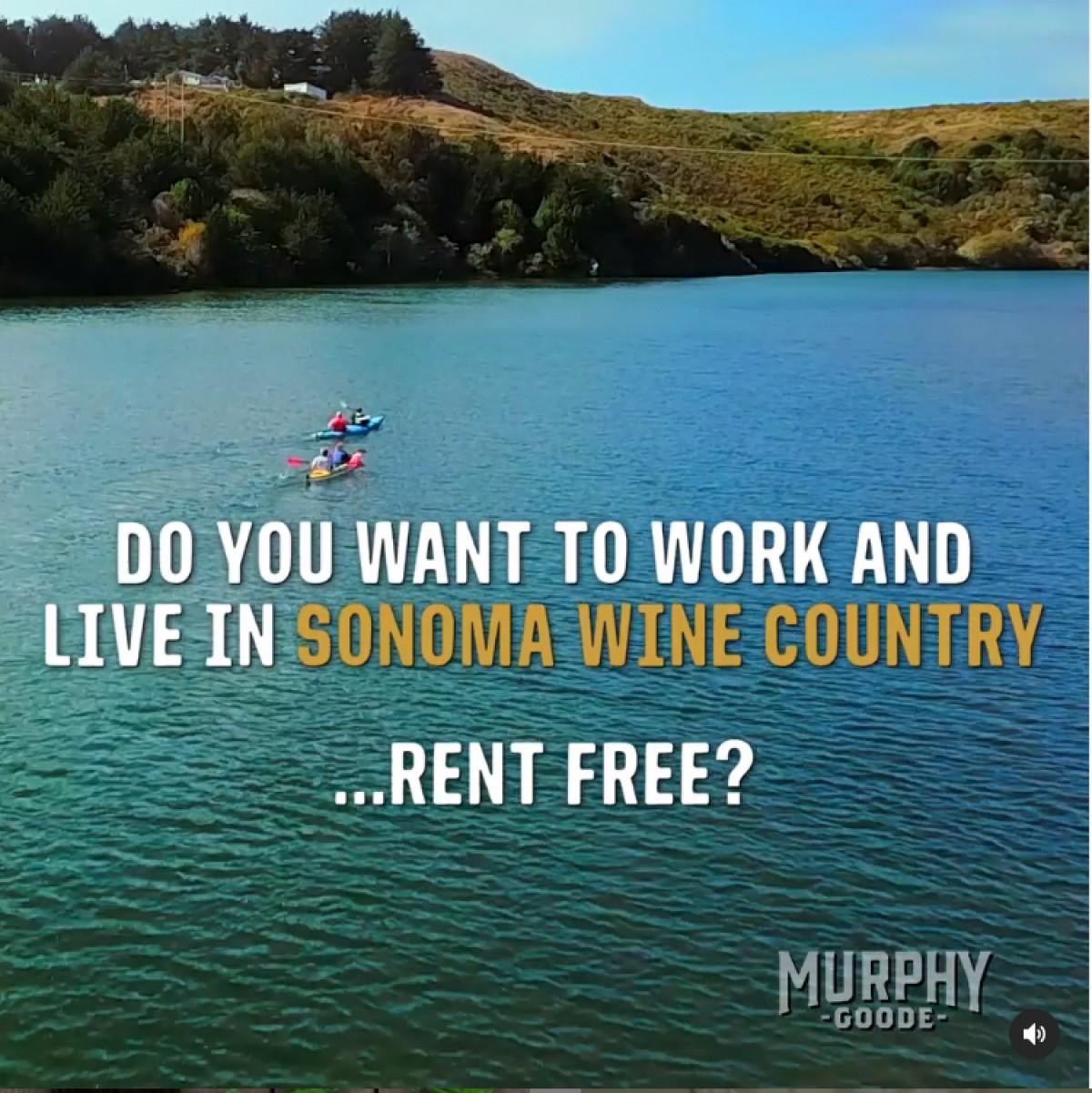 Murphy-Goode Wine ofereix 10.000 dòlars al mes i casa pagada durant un any
