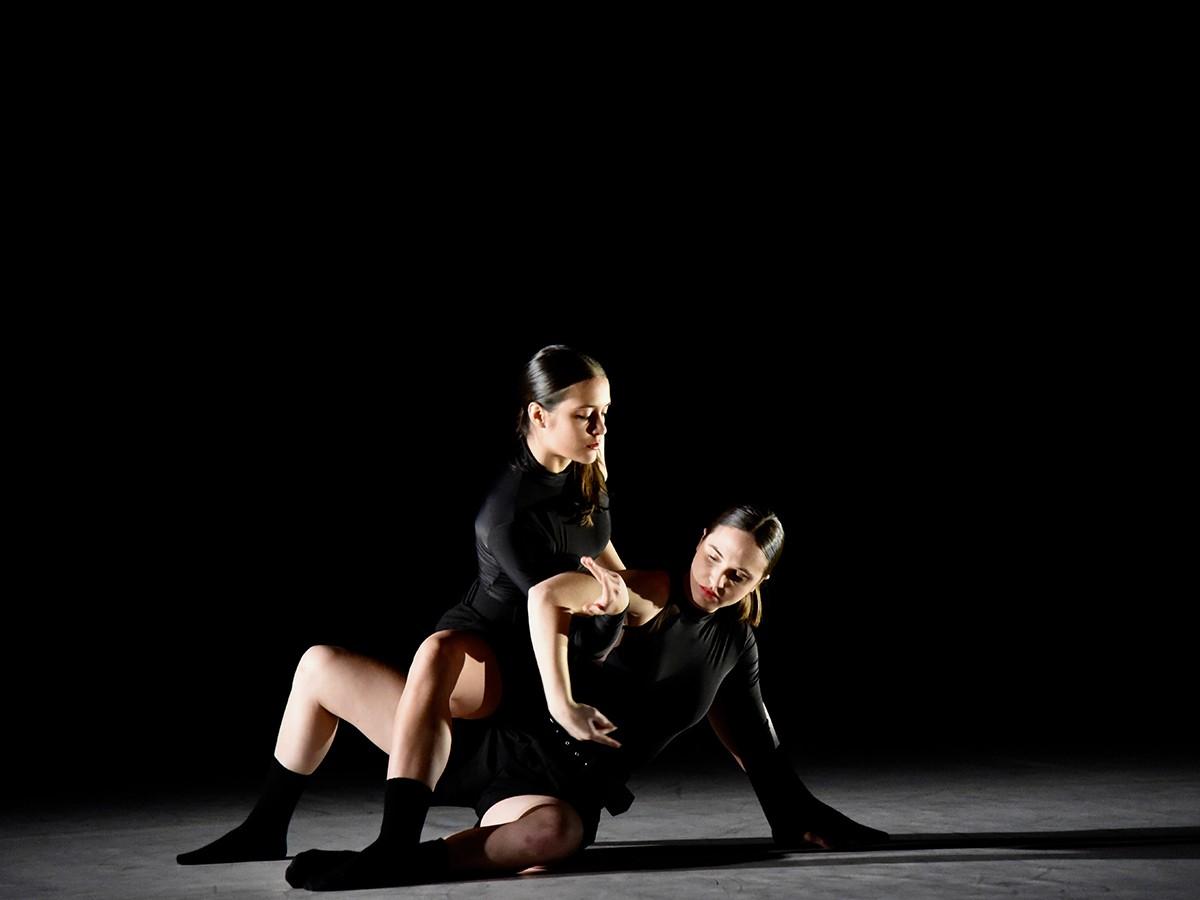 El Conservatori Superior de Dansa ofereix formació en les especialitat de Coreografia i interpretació i Pedagogia de la dansa.