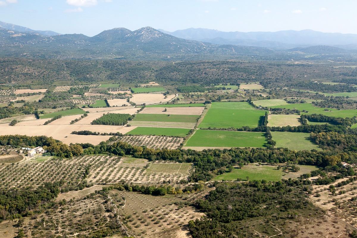 Imatges de l'Empordà i la serra de l'Albera