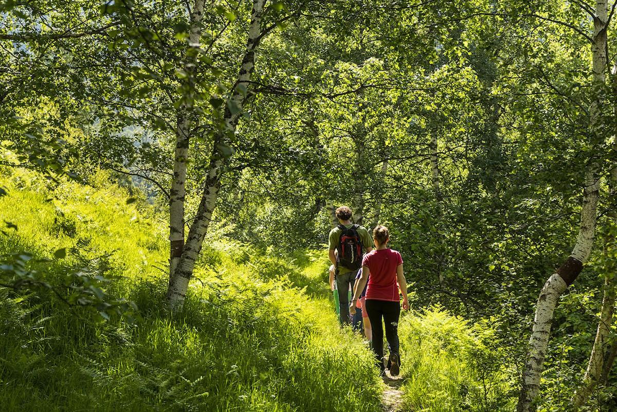 Dos persones caminant per un sender del Parc Natural de l'Alt Pirineu