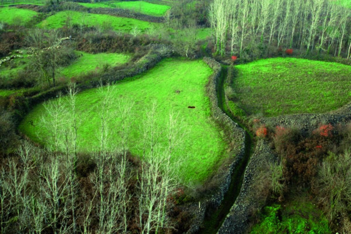 Murs de pedra seca en el paisatge de la Garrotxa.