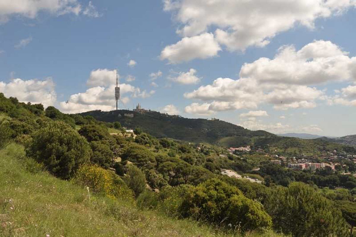 El Parc Natural de Collserola.