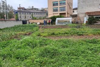 Centelles habilita terrenys municipals per a horts socials