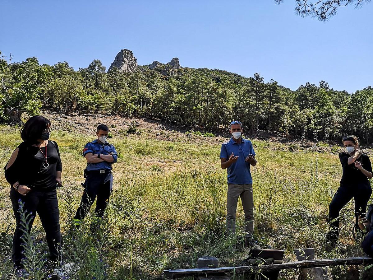 Experts dels Bombers, del CTFC i del Departament d'Acció Climàtica en una zona del Paratge Natural de Poblet