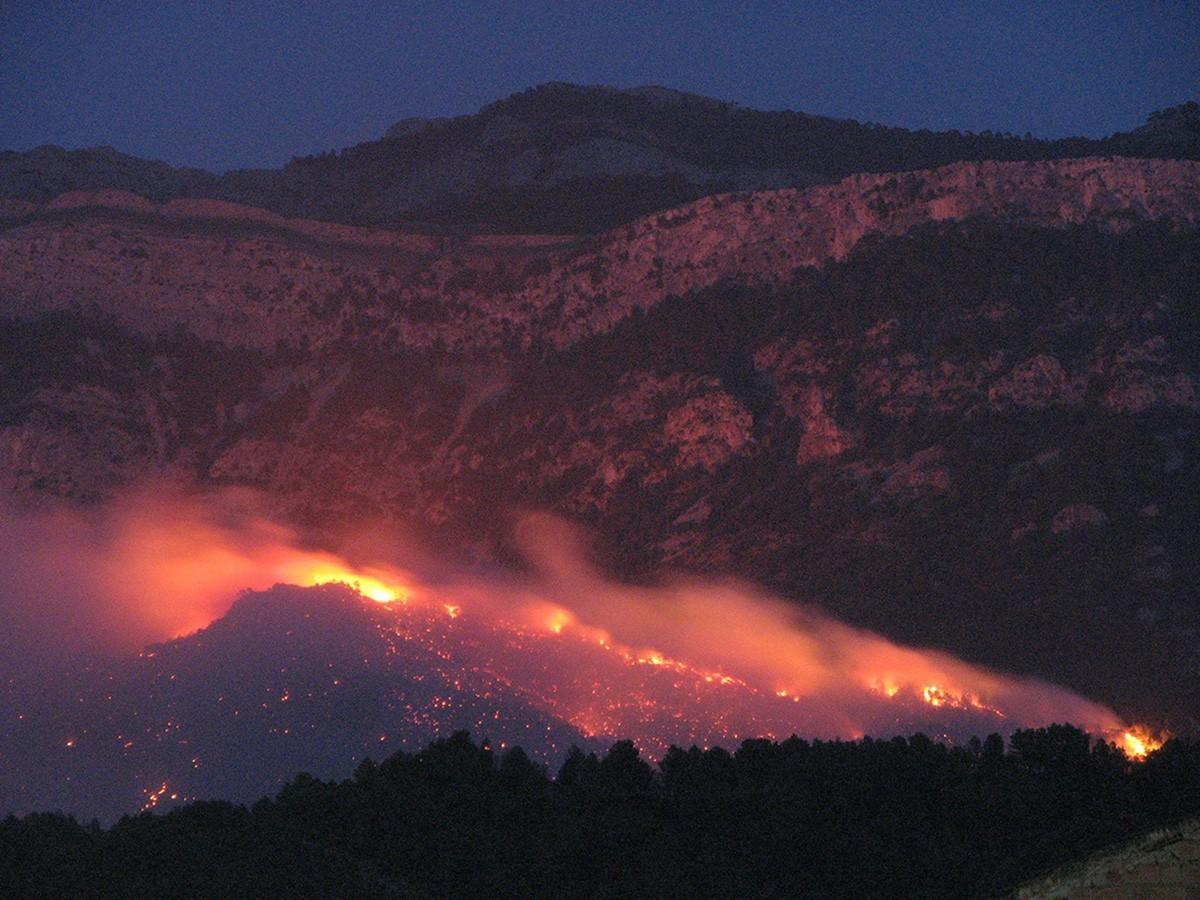 Les flames de l'incendi d'Horta de Sant Joan, el 2009