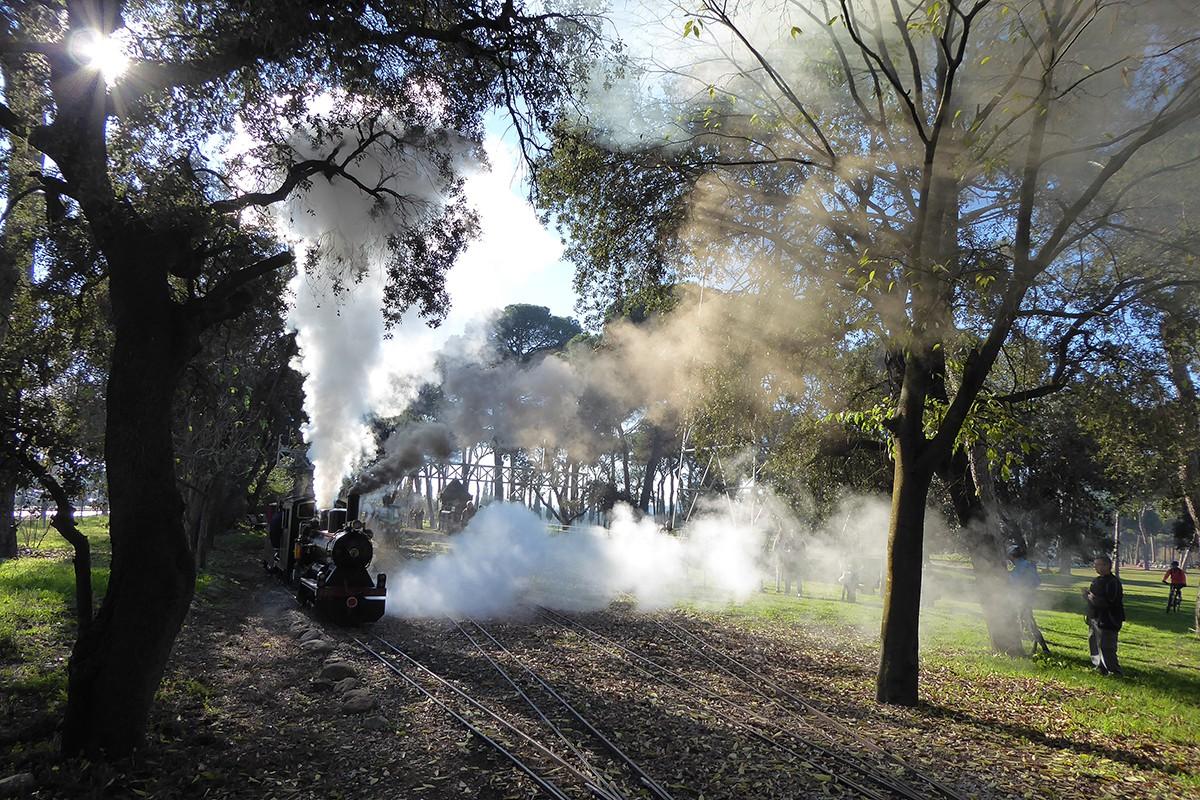 Màquina de vapor del Tren de Palau, de Palau-solità i Plegamans