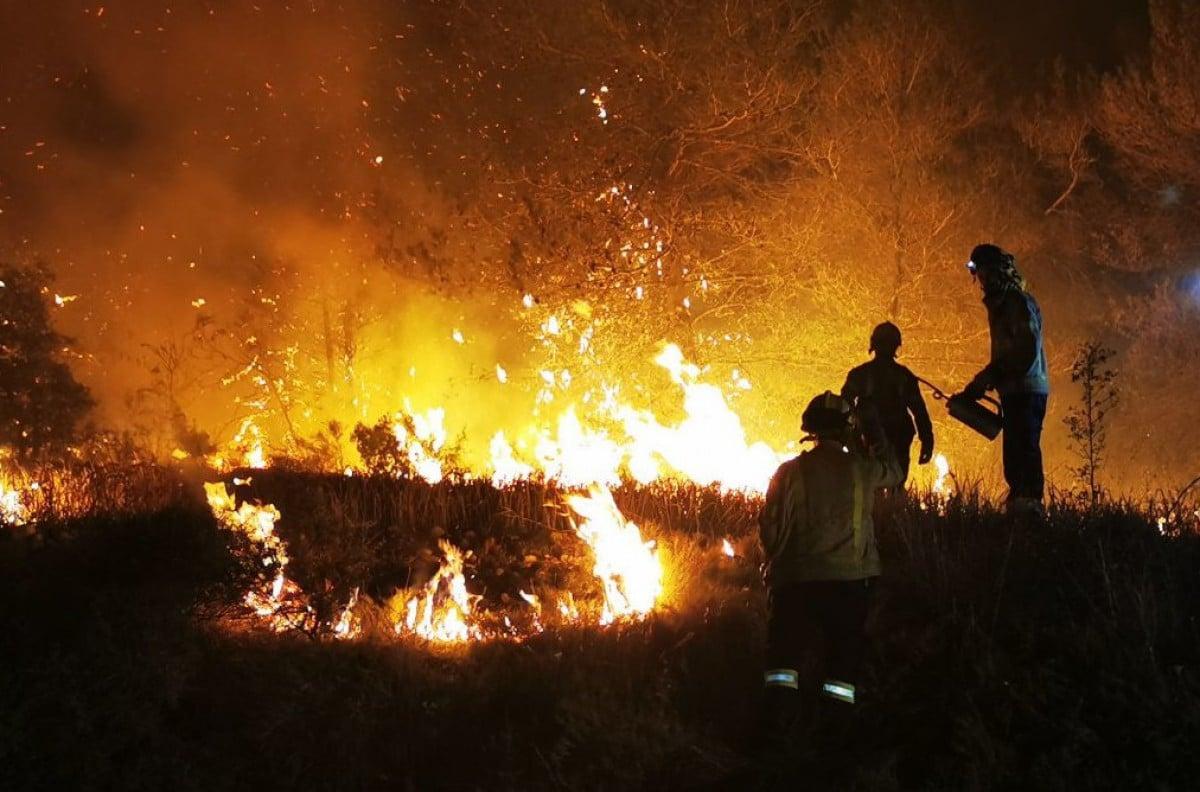 Els Bombers treballen des de fa dies per apagar l'incendi de la Conca de Barberà i l'Anoia