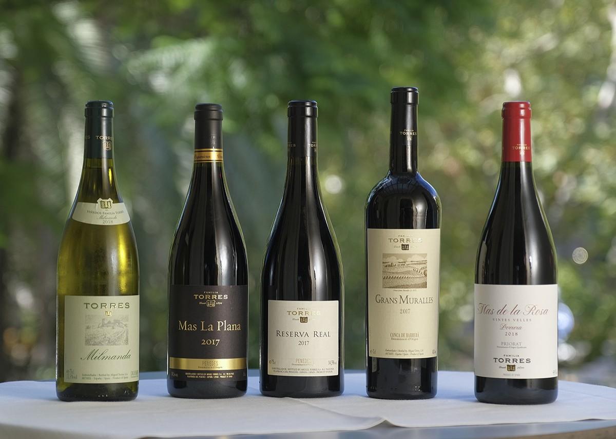 Els cinc vins de Família Torres de la Col·lecció Antologia