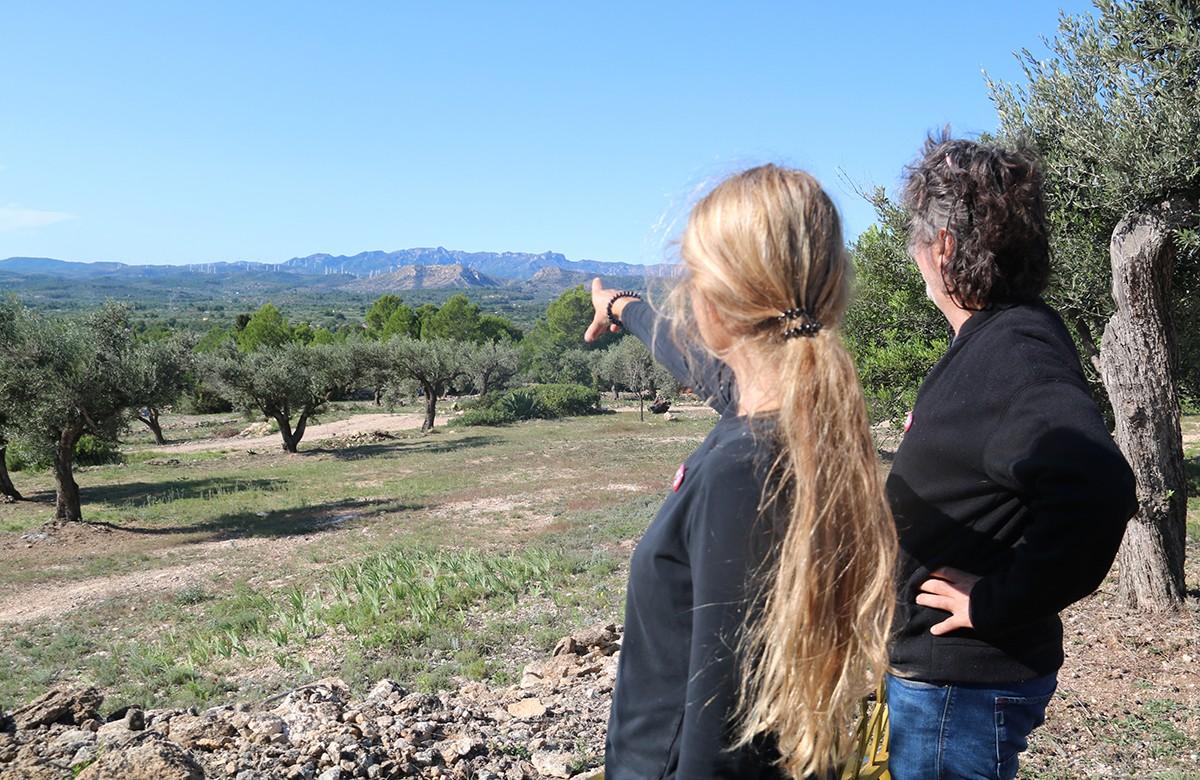 El president de l'associació Cova de la Masa, David Rosselló, i la seva dona, qui assenyala la zona on es projecta el parc eòlic l'Ametlló.