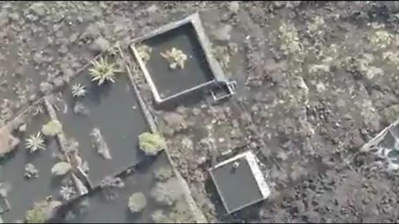 Rescataran amb drons quatre gossos atrapats per la lava a La Palma