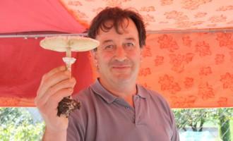 Una veïna de la Seu d'Urgell ingressada per confondre un bolet tòxic amb l'apagallums