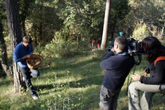«Espai Terra» de TV3, a la recerca de bolets a Sant Boi de Lluçanès