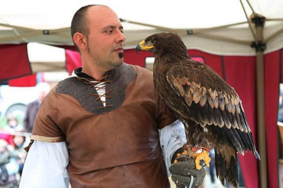 Fotos: espectacle de falcons