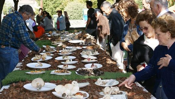 La Festa del Bolet de Sant Boi gira l'esquena a la mala temporada